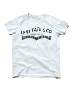 "Yoga T-Shirt ""Levitate"" White, for Men"